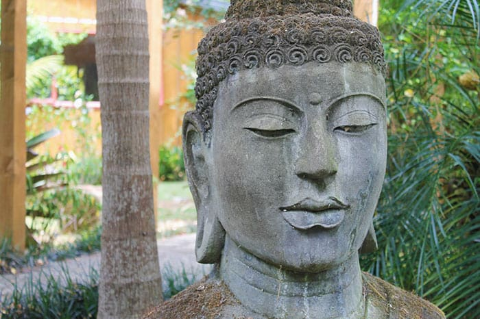 Find the Buddha inside of You - Questions about Meditation
